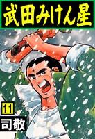 武田みけん星 11