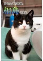 まちねこ写真集・相島 vol.1