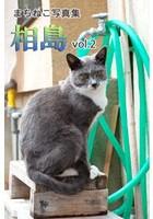 まちねこ写真集・相島 vol.2