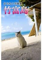 まちねこ写真集・竹富島 vol.1