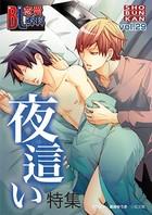 BL恋愛専科 vol.29夜這い特集