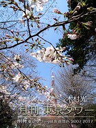 月刊 東京タワー vol.8 花景色 2007-2017
