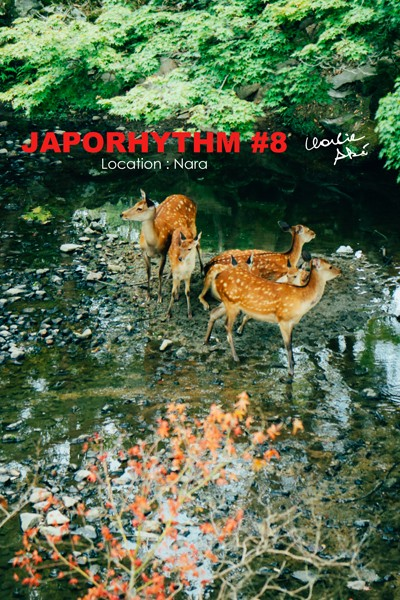 JAPORHYTHM #8/ Location Nara