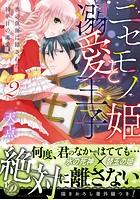 ニセモノ姫と溺愛王子〜氷の仮面に隠された10年目の渇愛〜