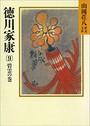 徳川家康 (9) 碧雲の巻