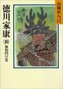 徳川家康 (10) 無相門の巻