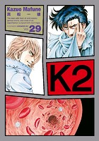 K2 (29)