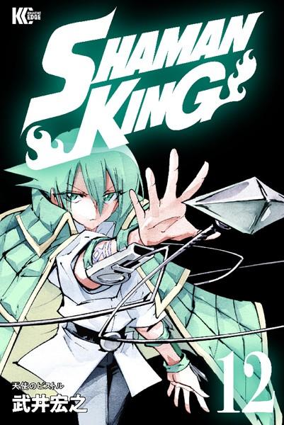 SHAMAN KING 〜シャーマンキング〜 KC完結版 12