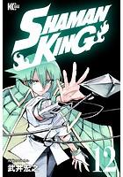 SHAMAN KING 〜シャーマンキング〜 KC完結版 (12)