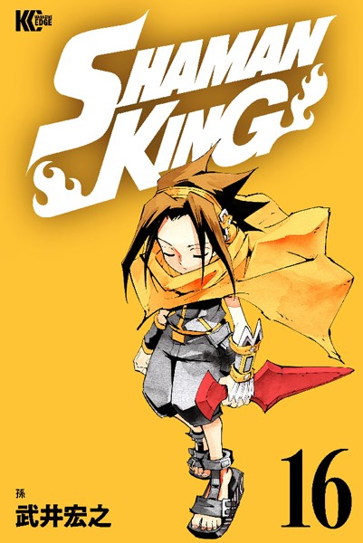 SHAMAN KING 〜シャーマンキング〜 KC完結版 (16)