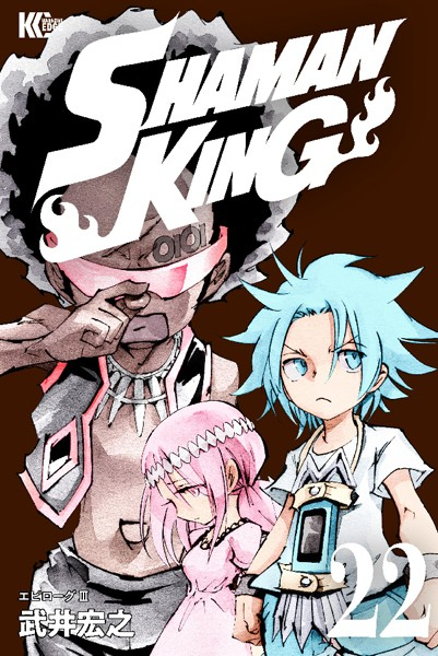 SHAMAN KING 〜シャーマンキング〜 KC完結版 22