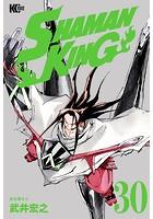 SHAMAN KING 〜シャーマンキング〜 KC完結版 (30)