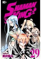 SHAMAN KING 〜シャーマンキング〜 KC完結版 (29)