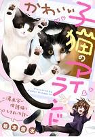 かわいい子猫のアイランド 〜漫画家が保護猫を引き取った話〜