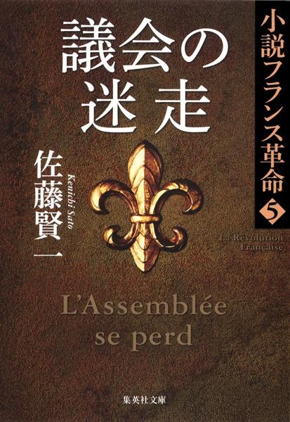 議会の迷走 小説フランス革命 5