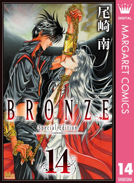 BRONZE -Special Edition- 14