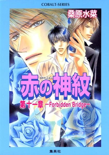 赤の神紋 第十一章―Forbidden Bridge―