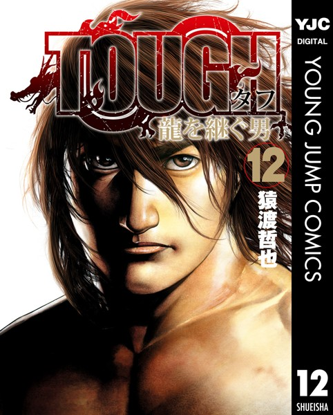 TOUGH 龍を継ぐ男 12