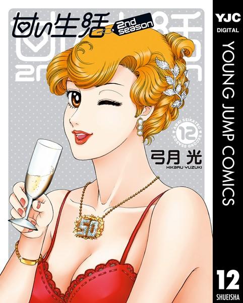 甘い生活 2nd season 12
