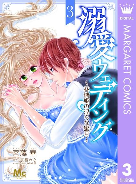 溺愛ウェディング 〜林檎姫の淫らな蜜月〜 3