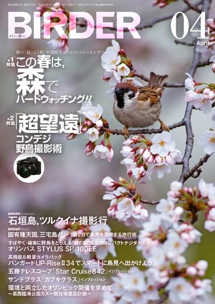 BIRDER 2014年 4月号