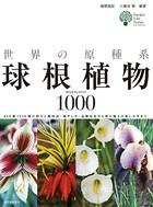 世界の原種系球根植物1000