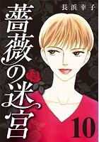 薔薇の迷宮 〜義兄の死、姉の失踪、妹が探し求める真実〜 (10)