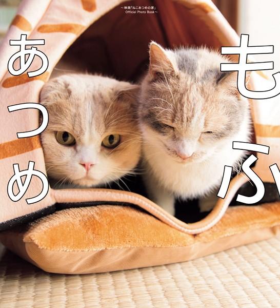 もふあつめ 〜映画「ねこあつめの家」Official Photo Book〜