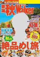 東海秋Walker 2017