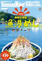 【最新版】神奈川・伊豆の漁港めし
