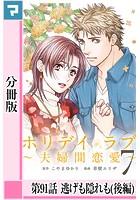 ホリデイラブ 〜夫婦間恋愛〜【分冊版】 第91話