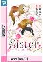 Sister【分冊版】 section.14