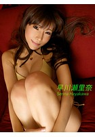 SEXY GALS COLLECTION☆早川瀬里奈 vol.2