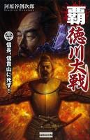 覇 徳川大戦