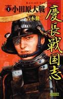 慶長戦国志