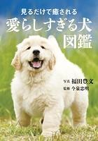 見るだけで癒される愛らしすぎる犬図鑑