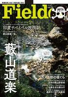 Fielder vol.34
