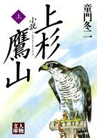 小説 上杉鷹山