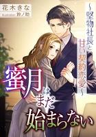 蜜月はまだ始まらない〜堅物社長と甘い契約恋愛〜