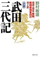 小説 武田三代記 信虎・信玄・勝頼、戦国最強軍団の光と影