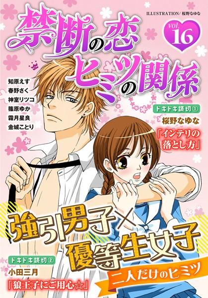 禁断の恋 ヒミツの関係 vol.16