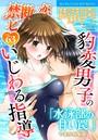 禁断の恋 ヒミツの関係 vol.63