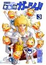 金色のガッシュ!! 完全版 (3)