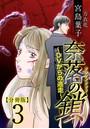 奈落の鎖〜DVからの逃走〜 分冊版 (3)