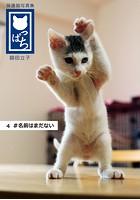 保護猫写真集 ねこっぱち! (4) #名前はまだない