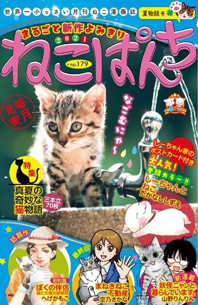 ねこぱんち No.179 夏物語号