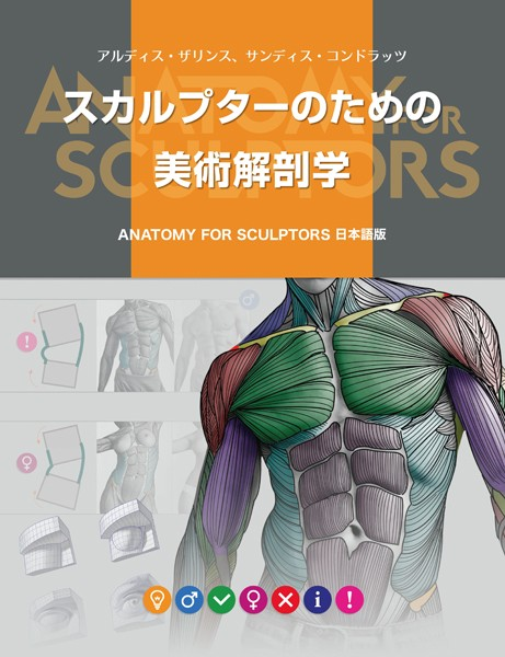 スカルプターのための美術解剖学